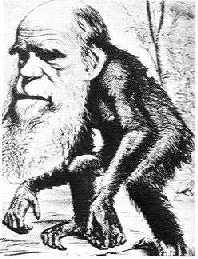 达尔文进化论再受致命挑战