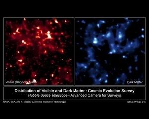 年评:2010十大科学新发现