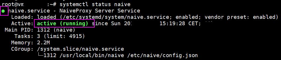 自建最强科学上网4:NaiveProxy + Caddy(更新20200518)